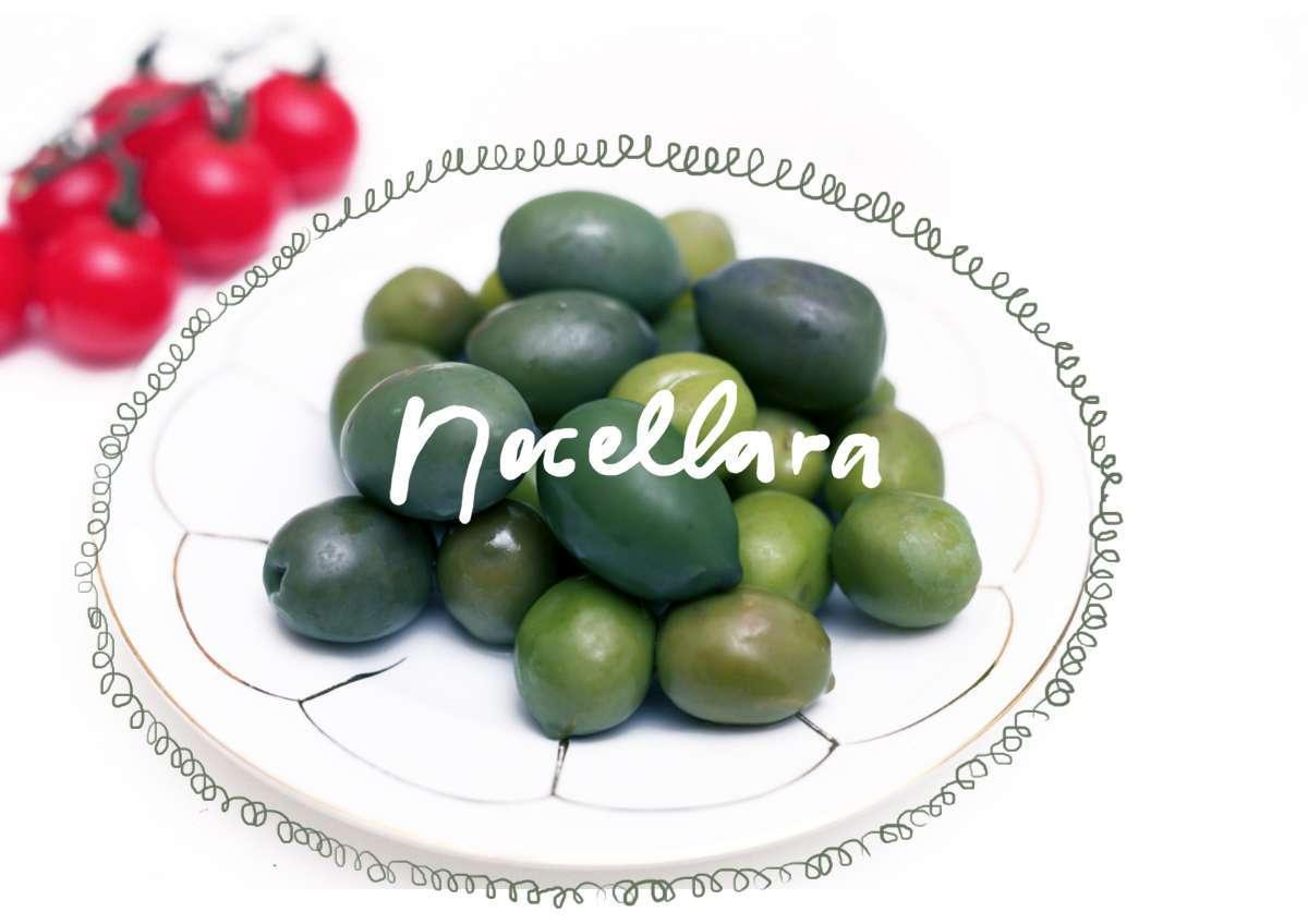 inst 2500 år gamla, klargröna oliverna komme